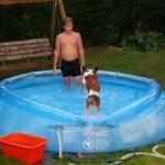 Tallkrogen, sommaren 2006