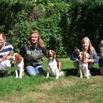 Gruppbild med Charlie, Elektra, Doris och Figge med sina mattar